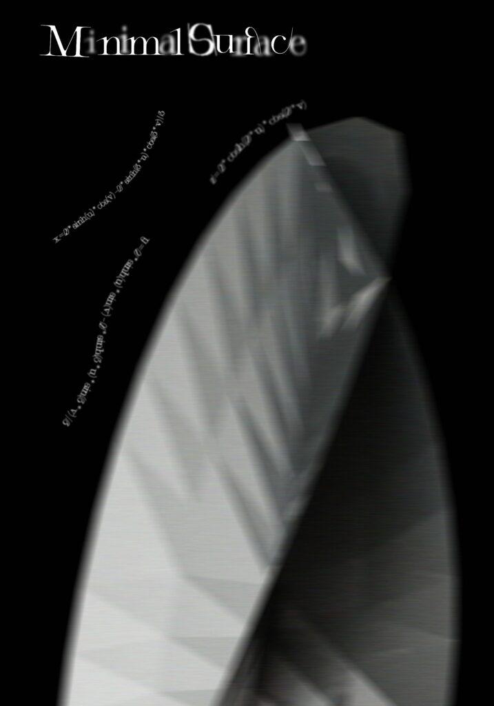 CHINA MINIMAL SURFACE Xu Yuanyuan